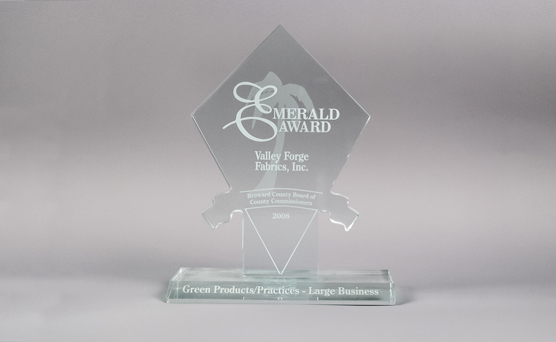 2008 Large Business Emerald Award for Green Products and Practices